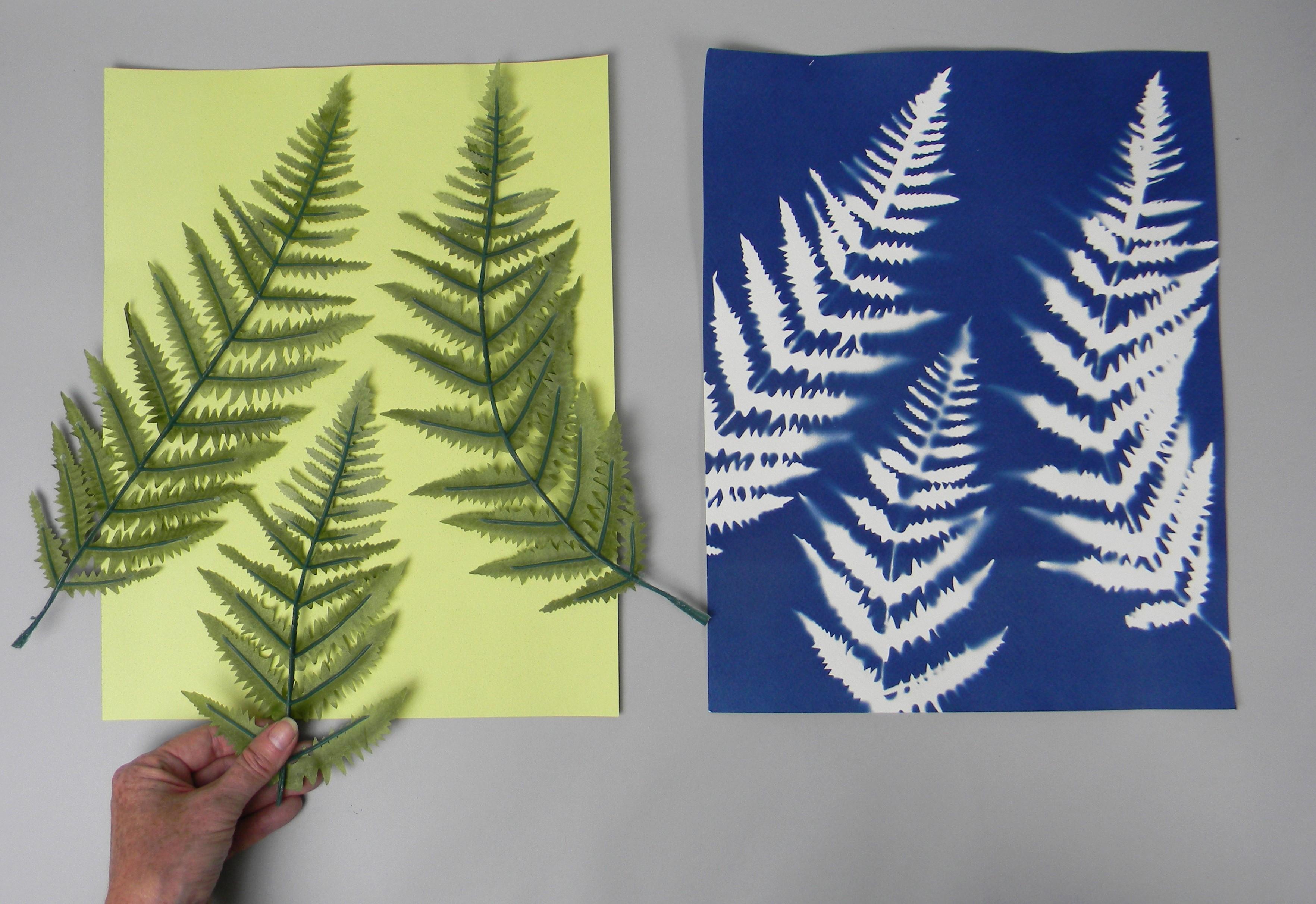 """11"""" x 14"""" cyanotype paper (white)"""