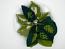 Cyanotype Cotton Table Napkins - Leaf