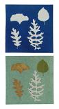 """6"""" x 6"""" cyanotype paper (white)"""