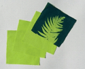 "6"" x 6"" cyanotype cotton squares (lime)"