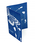 "5"" x 7"" cyanotype notecard kit"